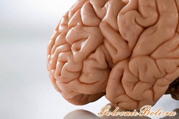 смерть головного мозга